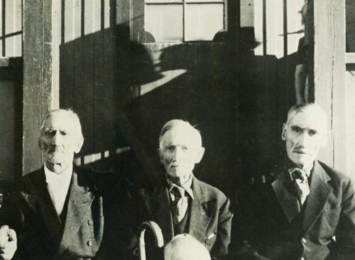 Bröderna Olof, Karl-Johan och Frans Albert Berggren Muskus