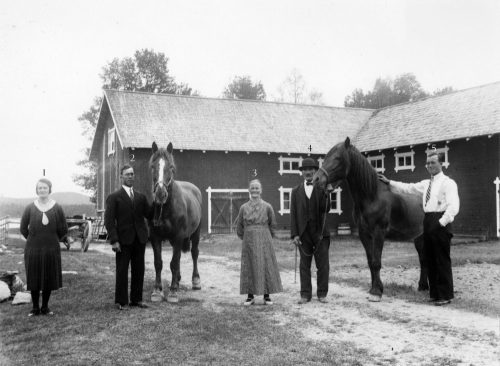Familjen Berggren Muskus No 4