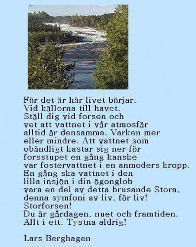 Dikt till Storforsen av Lars Berghagen.