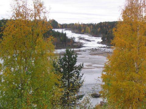 Höstbild från Storforsen