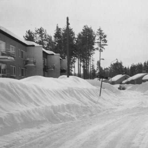 Vinter bild från Vidsel.